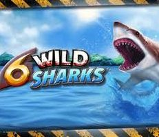 6 Wild Sharks Slot Logo