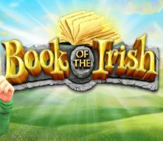 Book of the Irish