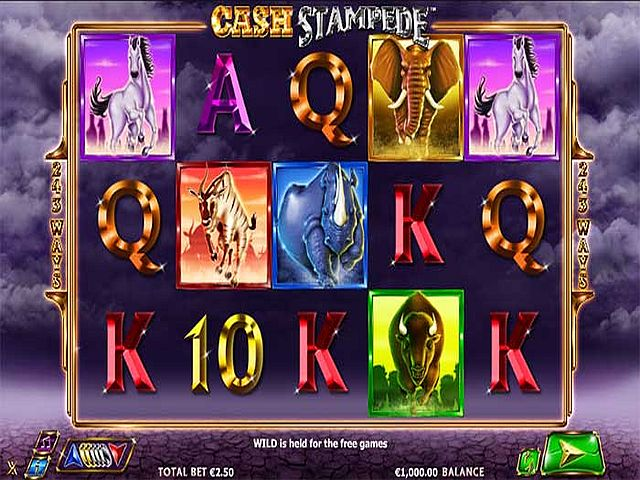 cashstampede-vorschau