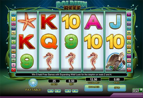 dolphin reef slot im online casino spielen