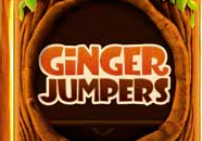 Ginger Jumpers